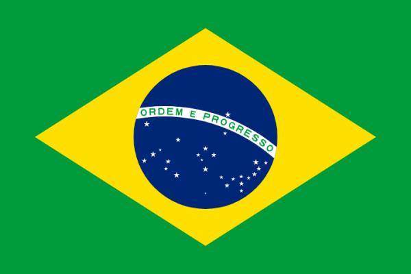 Telemedicine in Brasil
